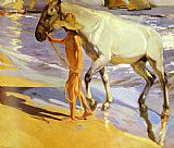 a grey horse Canvas Prints - El bano del caballo [The Horse's Bath]